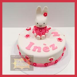 Nijn taart 10 personen