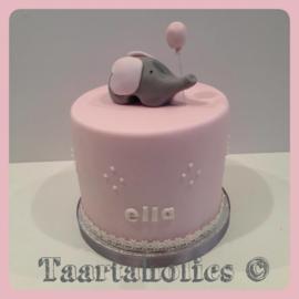 Geboorte taart 16 personen