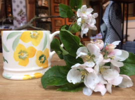 Hellebore and Holly babymug