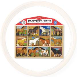 Melissa & Doug set van 12 paarden in kist