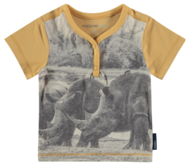 Noppies t-shirt jongen (56-80)