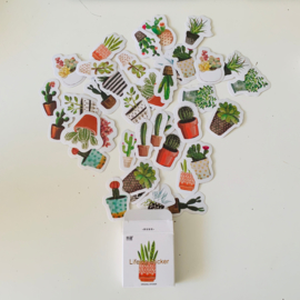 Watercolor cactussen en planten stickers