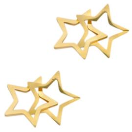 RVS dubbele sterren tussenstuk
