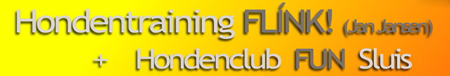 Neem een kijkje op de website van Hondentraining Flink