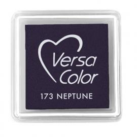 Versa Color 173 Neptune