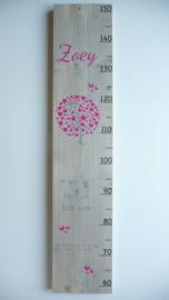 Lookbook groeimeters