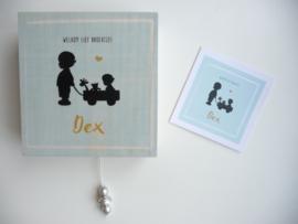 Muziekdoosje voor Dex op basis van haar geboortekaartje persoonlijk cadeau