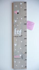 Groeimeter  naar aanleiding van geboortekaartje kraamcadeau Eef
