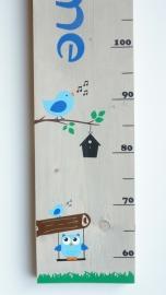 Groeimeter met naam uil en vogel  jongen