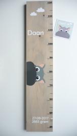 Groeimeter  van geboortekaartje kraamcadeau Daan