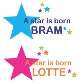 Geboortesticker grote ster