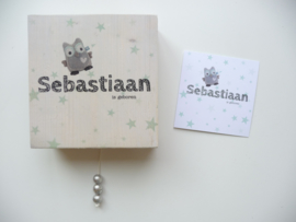 Muziekdoosje voor Sebastiaan op basis van haar geboortekaartje