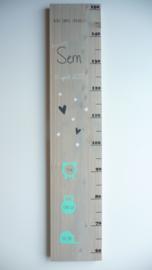 Groeimeter  van geboortekaartje kraamcadeau Sem