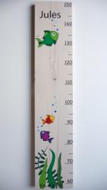 Groeimeter  eigen ontwerp
