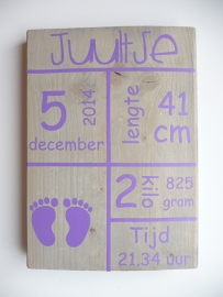 Geboortebord met geboortegegevens tekstblokken voetjes meisje