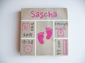 Geboortebord met geboortegegevens blokken vierkant meisje