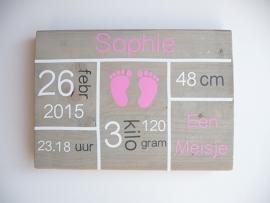 Geboortebord met geboortegegevens blokken rechthoek meisje