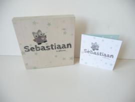 Geboortekaartje op hout kraamcadeau Sebastiaan