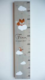 Groeimeter  van geboortekaartje kraamcadeau Finn