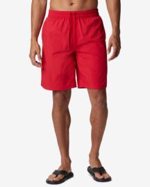 Columbia Roatan Drifter 2.0 Mens Swim Shorts