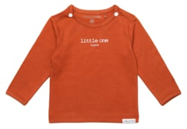 Noppies Longsleeve Hester text Spicy ginger