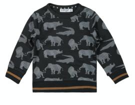 Dirkje sweater safari