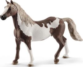 Schleich 13885 - Paint horse hengst