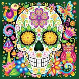 Diamond painting kleuren skull (30x30cm)(full)
