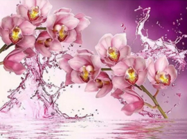 Diamond painting roze orchidee (50x40cm)(full)