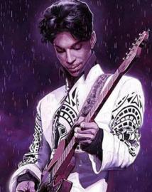 Diamond painting Prince (60x40cm)(full)