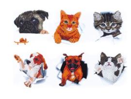 Diamond painting stickers (6 stuks)(dieren)