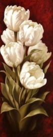 Diamond painting witte bloemen (50x20cm)(full)
