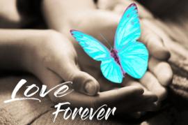 Diamond painting forever vlinder (blauw)(60x40cm)(full)