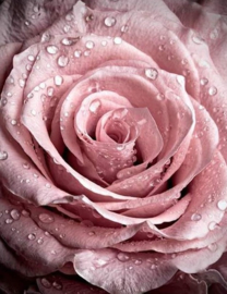 Diamond painting roze roos (30x40cm)(full)