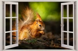Diamond painting raam uitzicht eekhoorntje (60x40cm)(full)