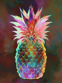 Diamond painting kleur ananas (50x40cm)(full)