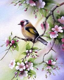 Diamond painting vogeltje op tak (50x40cm)(full)