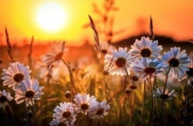 Diamond painting zonsondergang bloemen (60x40cm)(full)