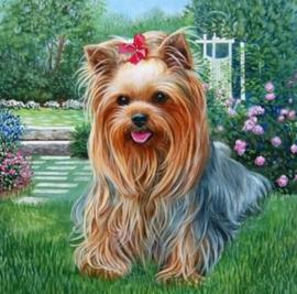 Diamond painting lief hondje (25x25cm)(full)