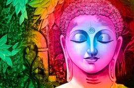 Diamond painting kleuren boeddha (70x50cm)(full)