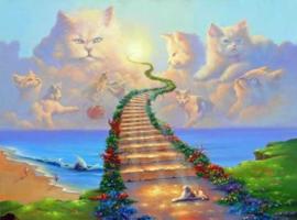 Diamond painting heaven cats (60x45cm)(full)