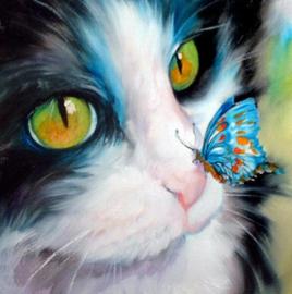 Diamond painting poes met vlinder (20x15cm)