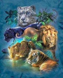 Diamond painting big cats (65x50cm)(full)