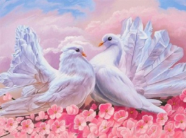 Diamond painting schattige duiven (50x40cm)(full)(ronde steentjes)