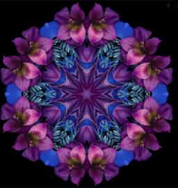 Diamond Painting  bloemen mandala (40x40cm)full)