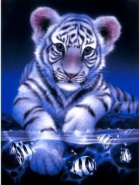 Diamond painting baby tijger (60x45cm)(full)