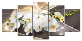 Diamond painting orchidee (5 luiken)(2x15x23cm)(2x15x30cm)(1x15x38cm)(full)