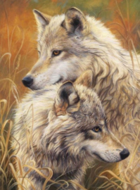 Diamond painting mooie wolven (60x45cm)(full)