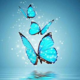 Diamond painting blauwe vlinders (45x45cm)(full)