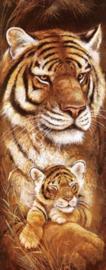 Diamond painting tijgertjes (50x20cm)(full)(ronde steentjes)